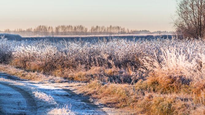 Pogoda na dziś: dużo słońca, trochę śniegu. Przenikliwy chłód