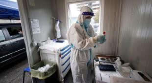Prof. Iwona Paradowska-Stankiewicz o tym, jak zahamować rozprzestrzenianie się wirusa