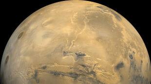 Studenci mogą zaplanować misję na Marsa. Szansa dla Polaków?