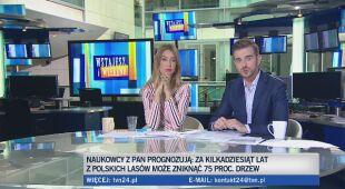 Profesor Andrzej Jagodziński o polskich lasach