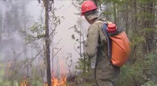 Wielkie pożary lasów na Syberii