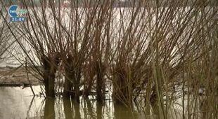 12.04 | Raport z polskich rzek